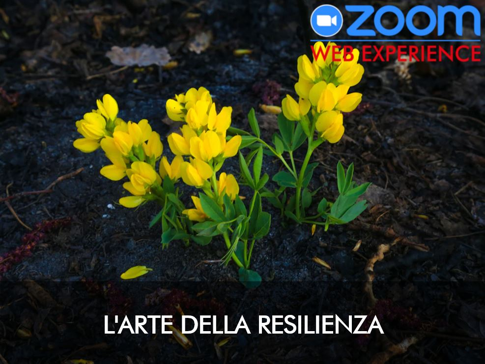 L'ARTE DELLA RESILIENZA (WEB-WORKSHOP)