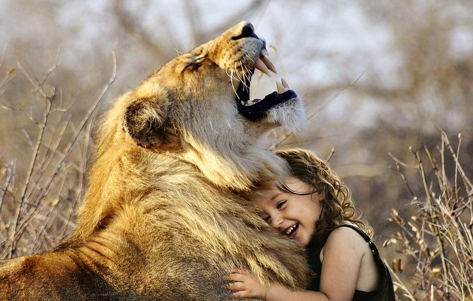 Emozioni E Intelligenza Relazionale